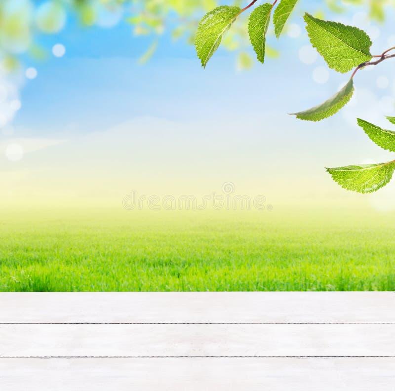 与白色木桌、草、绿色叶子、蓝天、草和bokeh的背景 免版税图库摄影
