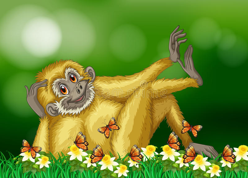 与白色毛皮的长臂猿在森林里 皇族释放例证