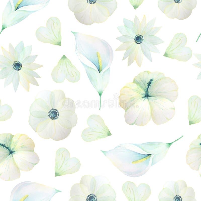 与白色水彩花的无缝的样式 皇族释放例证