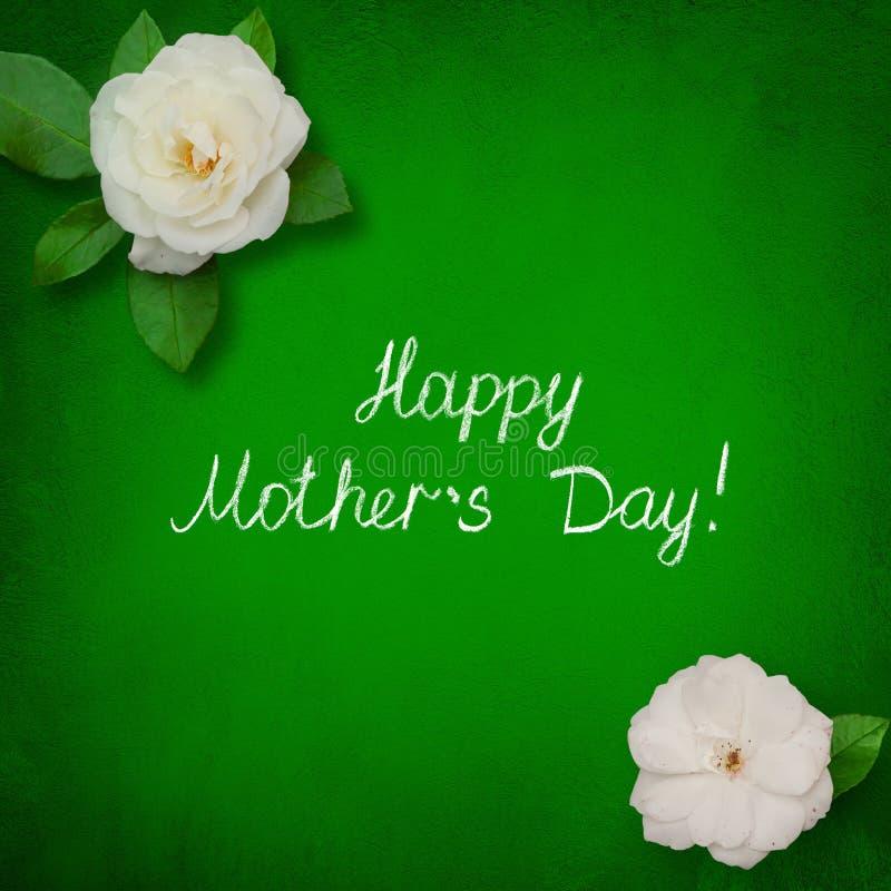 与白色玫瑰色花的美好的贺卡愉快的母亲节 库存照片
