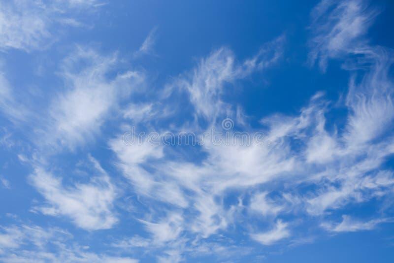 与白色精美鳍类的云彩的蓝天 库存图片