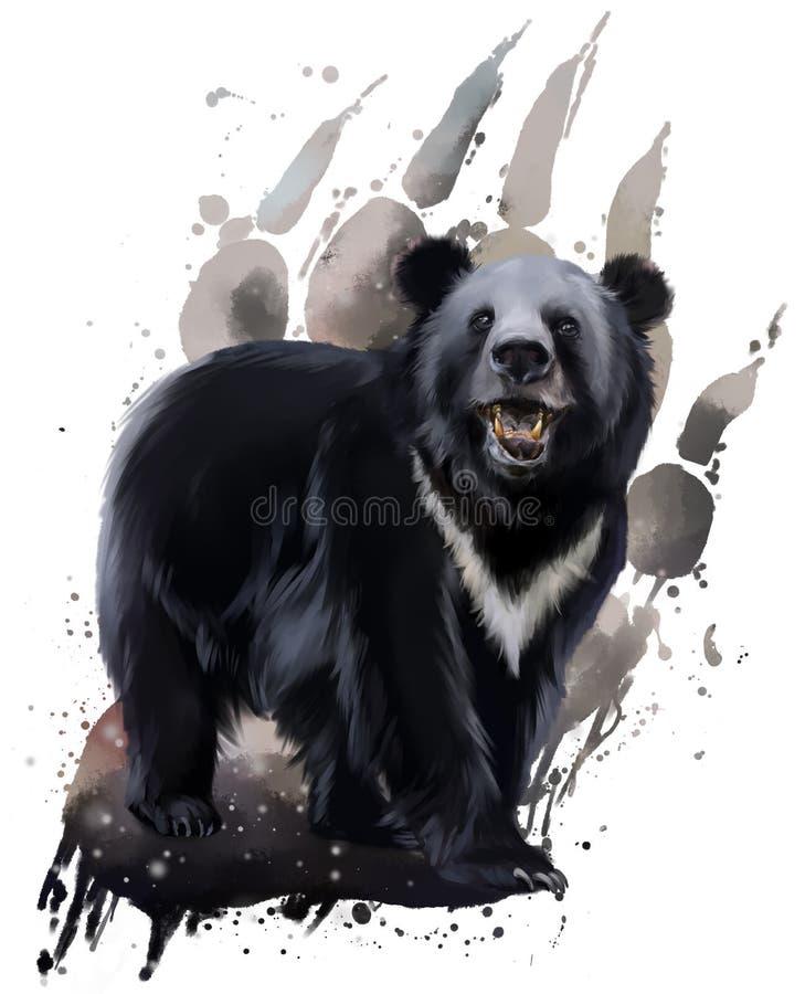 与白色胸口的黑熊 库存例证