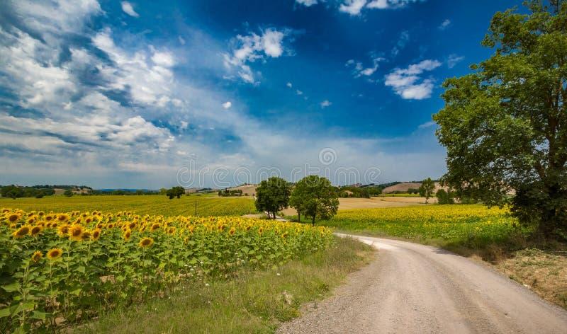 与白色蓬松云彩的蓝天漂浮在五颜六色的意大利语su 图库摄影