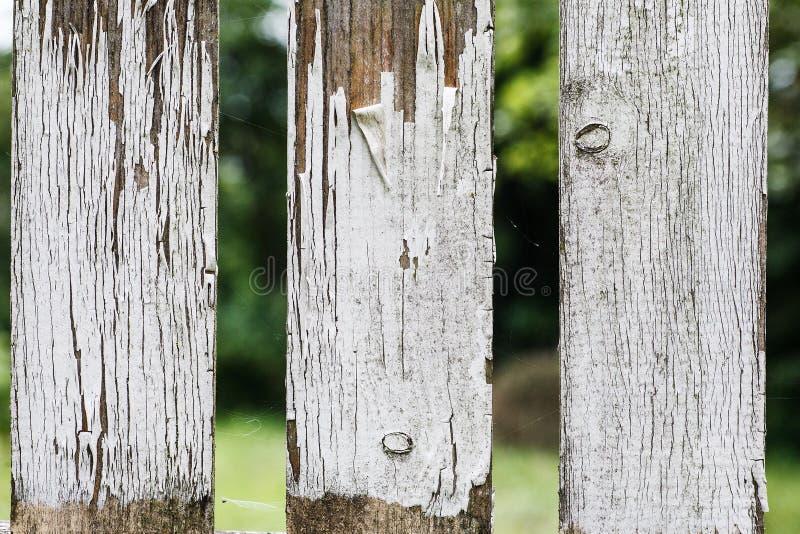 与白色被剥皮的油漆的老木篱芭片段,抽象纹理 库存图片