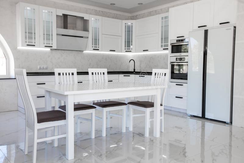 与白色leminate的现代食家厨房内部 免版税库存图片