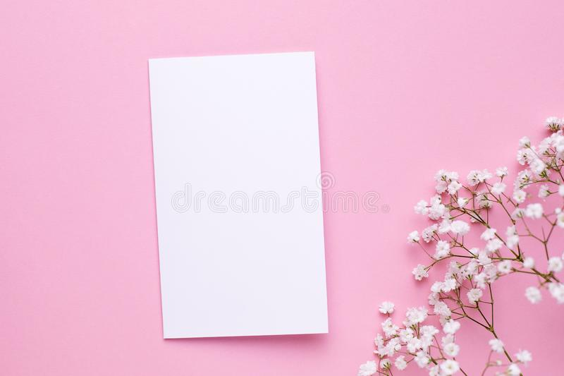 与白花的当前卡片在桃红色淡色台式视图和平的被放置的样式 ?????? 免版税库存图片