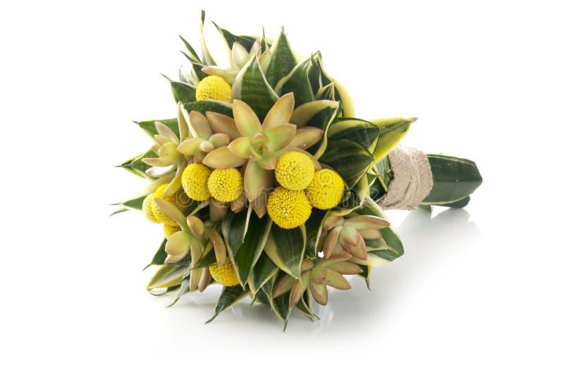 与百合科植物和多汁植物的美丽的花束 免版税图库摄影