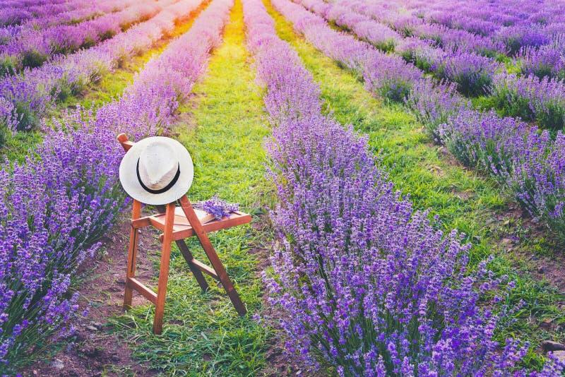 与的一把椅子垂悬在帽子、一本开放书和一束淡紫色开花在开花的淡紫色行之间在夏天s下 免版税库存照片