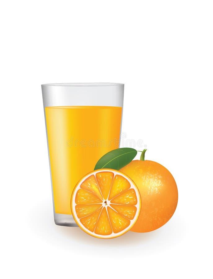 与的橙汁在玻璃旁边的新鲜的桔子 向量例证