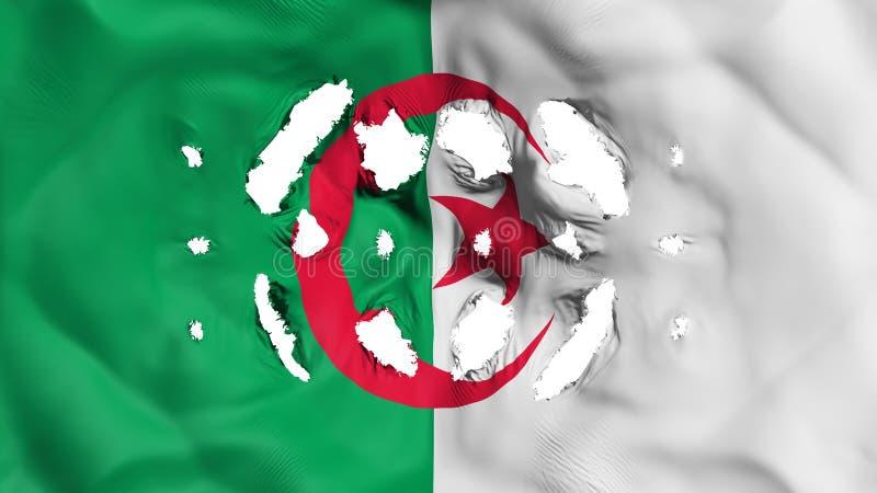 与的阿尔及利亚旗子小孔 皇族释放例证