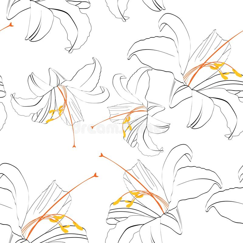 与皇家百合的美好的无缝的样式 手拉的等高线 皇族释放例证