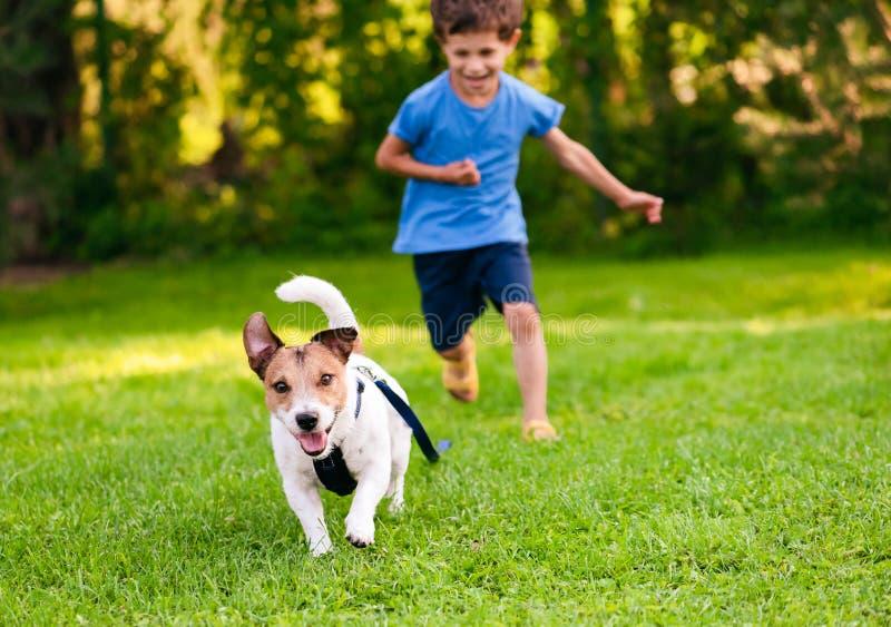 与皮带的淘气狗在从他的经理的地面运转 免版税图库摄影