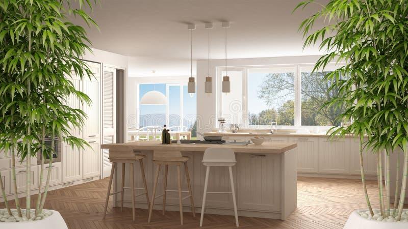 与盆的竹植物的禅宗内部,自然室内设计概念,有大窗口的现代厨房,全景经典白色ar 向量例证