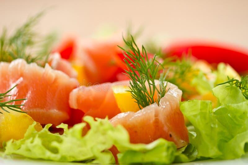 与盐味的三文鱼的沙拉 库存照片