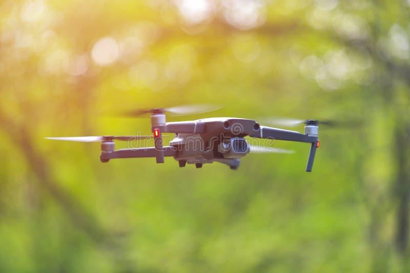 与盘旋在forrest,自然本底里面的照相机的飞行的寄生虫 免版税库存图片