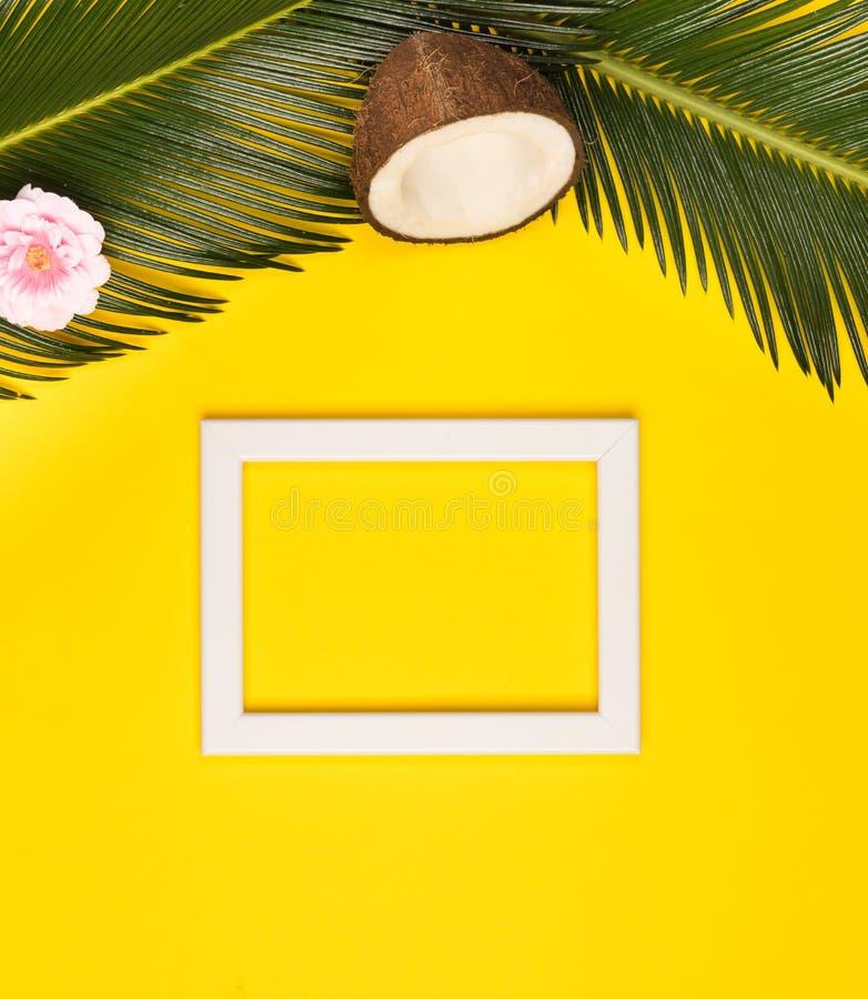 与相框、绿色叶子、椰子和花的时髦的夏天构成在黄色背景 与拷贝温泉的艺术品大模型 免版税库存照片