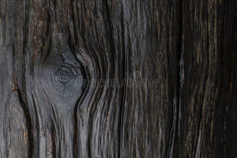与看起来不可思议和神圣的木眼睛的一条湿木线样式 免版税库存图片
