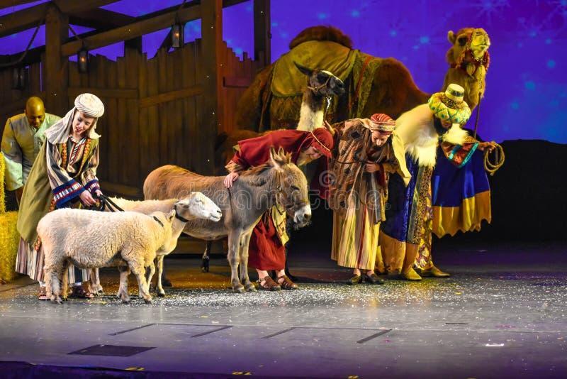 与真正的动物的圣诞节庆祝在Seaworld在国际推进地区2 库存图片