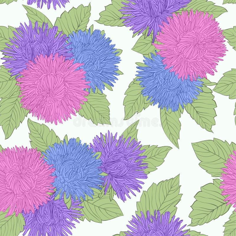 与着色的美好的无缝的背景开花翠菊 向量例证