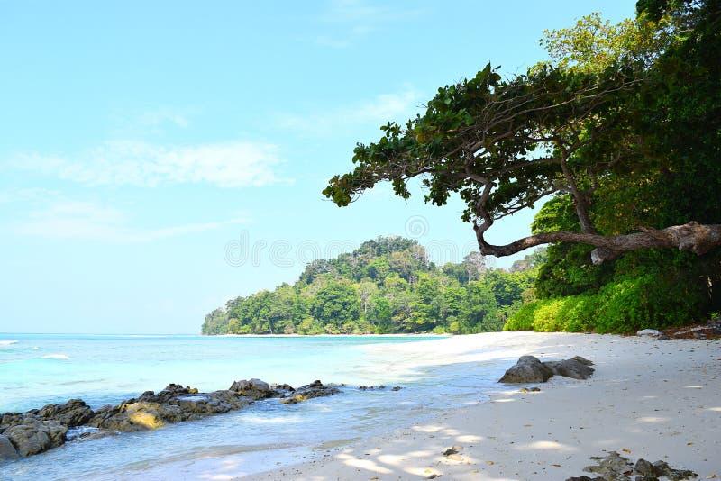 与石海滩、树、天空和水的尼尔的小海湾,Radhanagar海滩,哈夫洛克岛,安达曼尼科巴,印度的平静的风景 库存图片