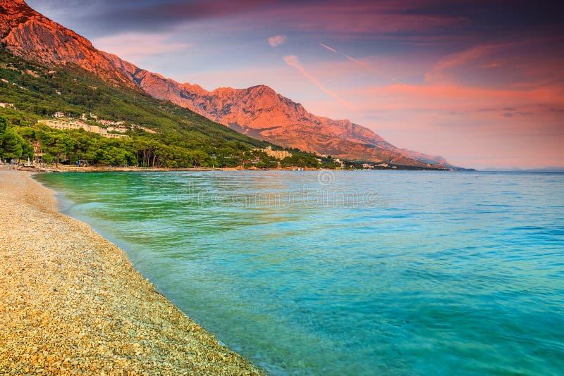 与石渣海滩, Brela,马卡尔斯卡里维埃拉,达尔马提亚,克罗地亚的美丽的海湾 免版税库存图片