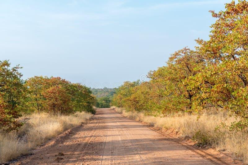 与石渣路的秋天风景 库存照片