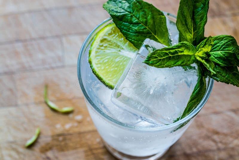 与石灰、薄荷叶和冰的伏特加酒或杜松子酒补剂鸡尾酒 库存图片