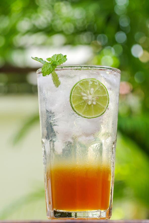 与石灰切片的新鲜的饮料蜂蜜柠檬在绿色b的苏打和薄菏 库存图片