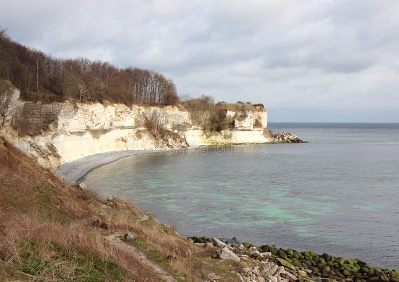与石灰石反射的Stevns Klint海岸线 免版税库存照片