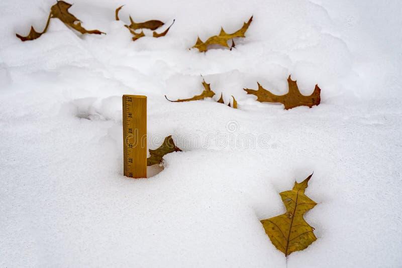 与码尺的测量的冬天降雪 免版税库存图片