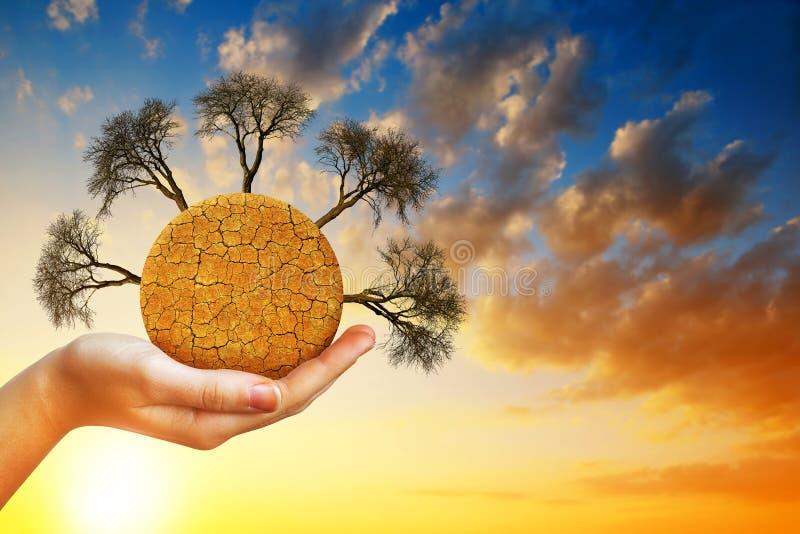 与破裂的土壤和贫瘠树的干燥行星在手中 图库摄影