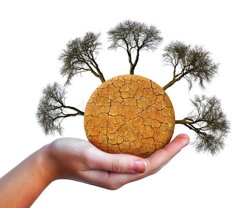 与破裂的在白色背景在手中隔绝的土壤和贫瘠树的干燥行星 库存图片