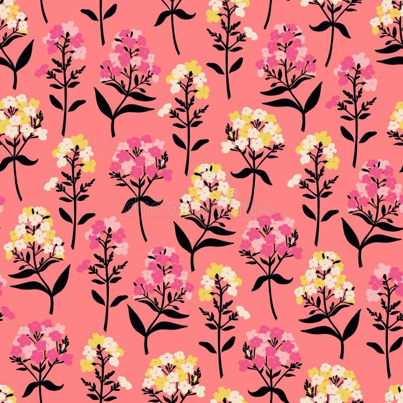 与福禄考花的无缝的样式在桃红色的 库存例证