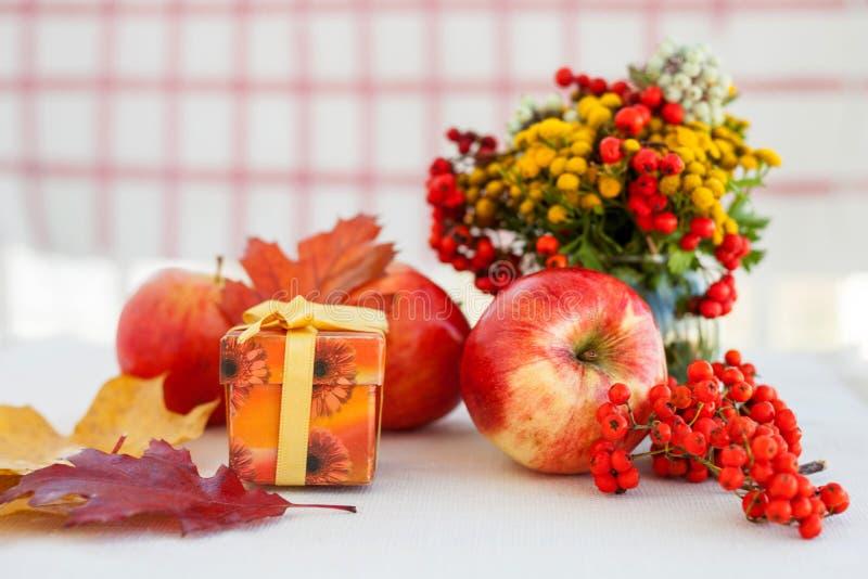 与秋叶和花揪的红色成熟苹果 图库摄影