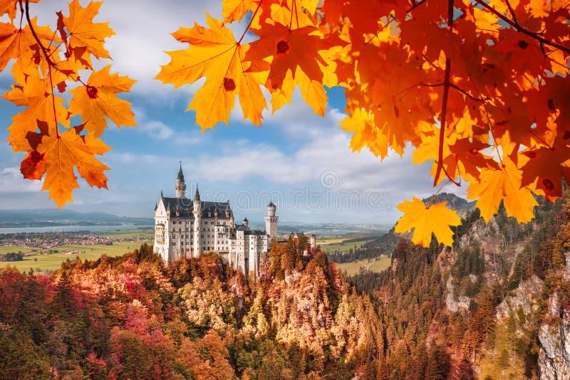 与秋叶的新天鹅堡城堡在巴伐利亚,德国 免版税库存照片
