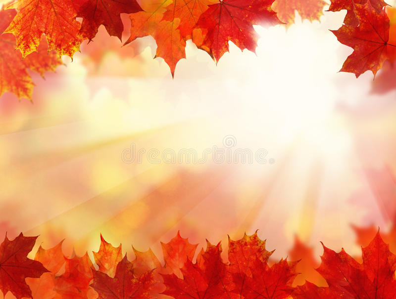 与秋叶的秋天背景 免版税库存照片