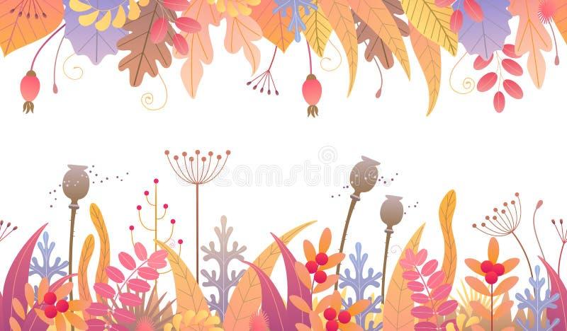 与秋天厂的花卉水平的无缝的边界 库存例证