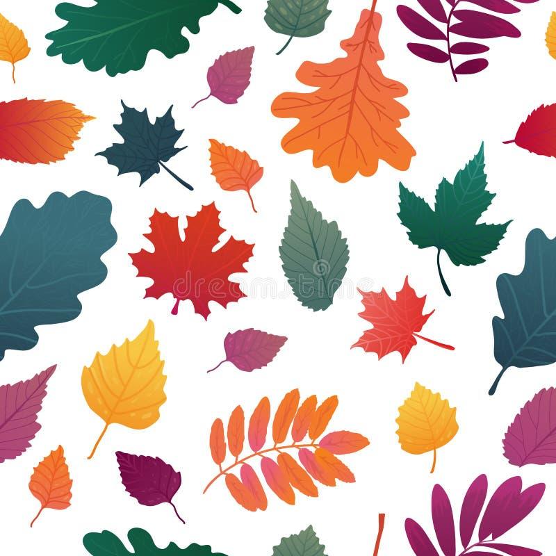 与秋天叶子样式的无缝的背景 秋天草本,在白色背景的枝杈 橡木和枫叶graient colo 库存例证