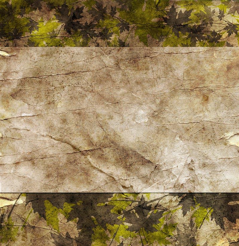 与秋天叶子的花卉难看的东西框架在老羊皮纸.old pa 库存例证