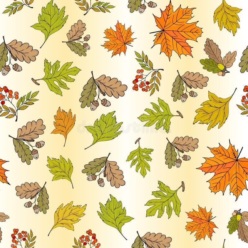 与秋天山楂树叶子和莓果的无缝的秋天背景 库存例证