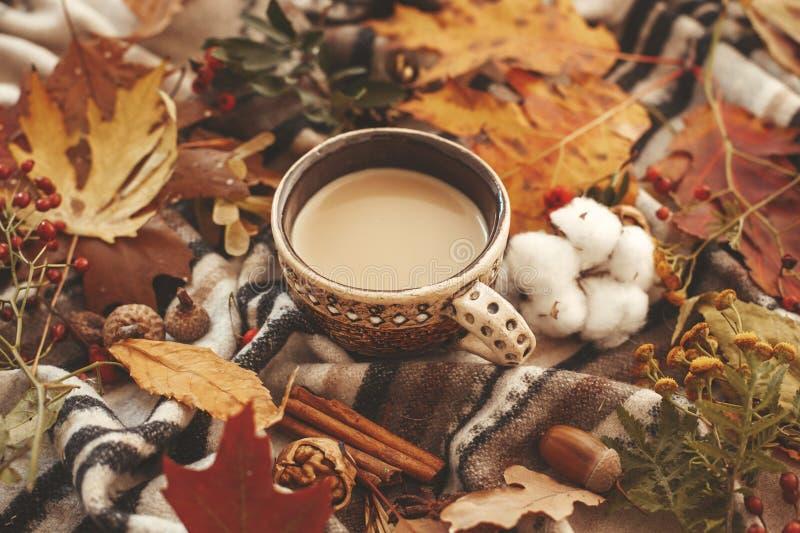 与秋天的可口咖啡离开,莓果,坚果,橡子,棉花 免版税库存图片