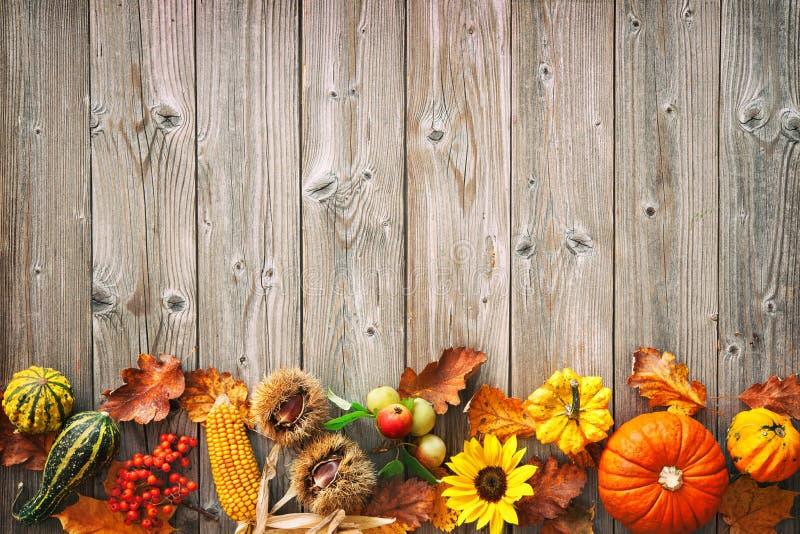 与秋季叶子,果子的收获或感恩背景 库存图片