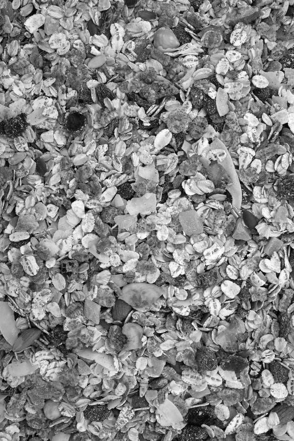与种子、混杂的果子和坚果背景的Muesli谷物 库存图片