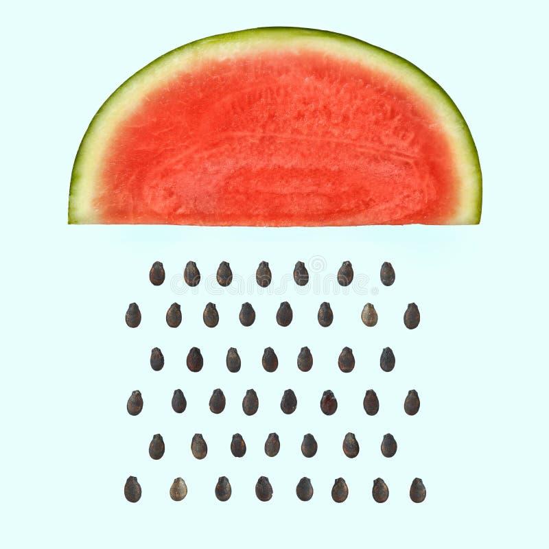 与种子下雨的西瓜切片 库存照片
