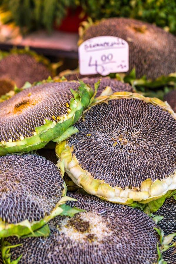与种子的向日葵待售在农夫市场上 波兰 库存图片