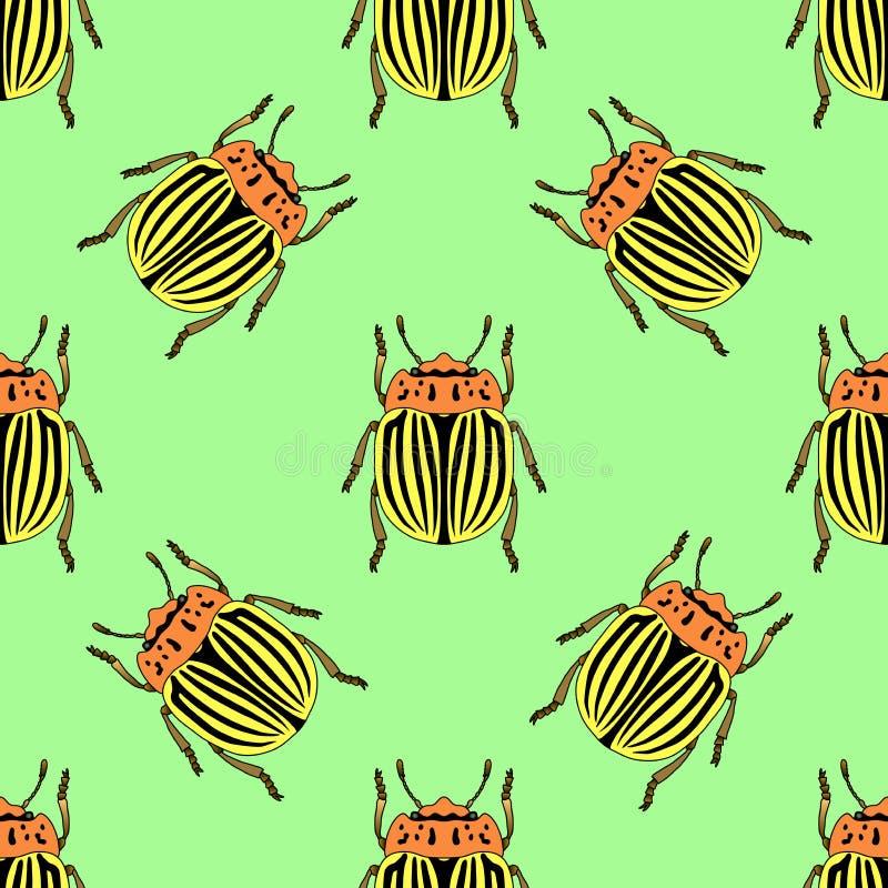 与科罗拉多薯虫的无缝的样式 Leptinotarsa decemlineata 科罗拉多甲虫 手拉的科罗拉多甲虫 皇族释放例证