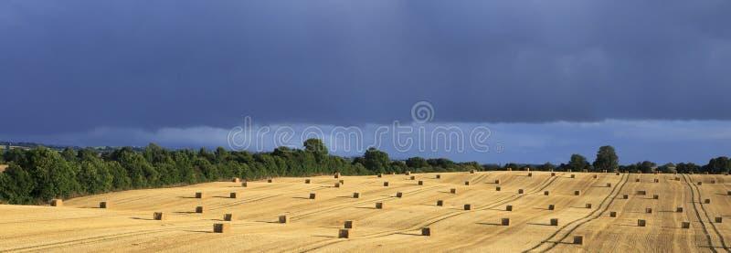 与秸杆大包和暴风云的美好的领域 图库摄影