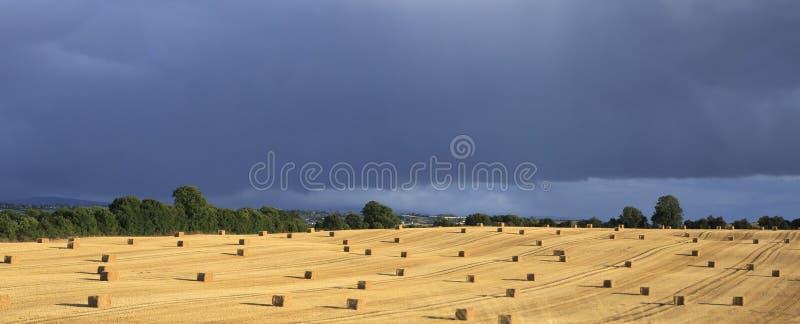 与秸杆大包和暴风云的美好的领域 库存图片