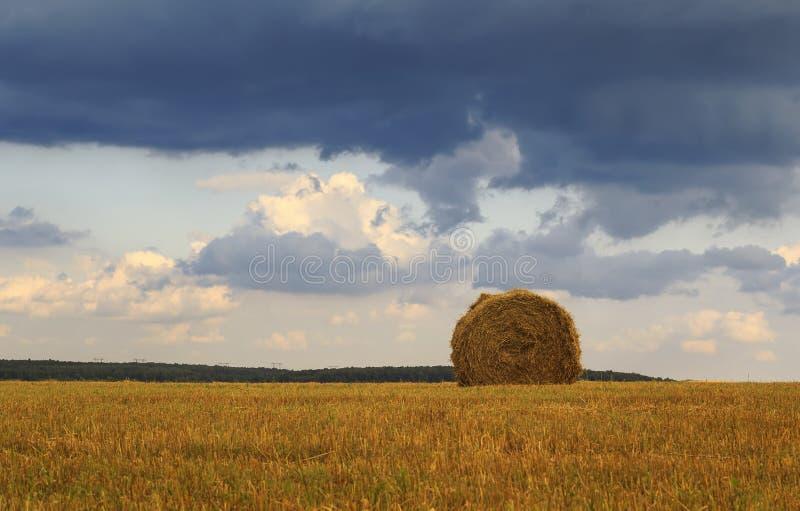 与秸杆领域和干草堆的农村风景  库存照片