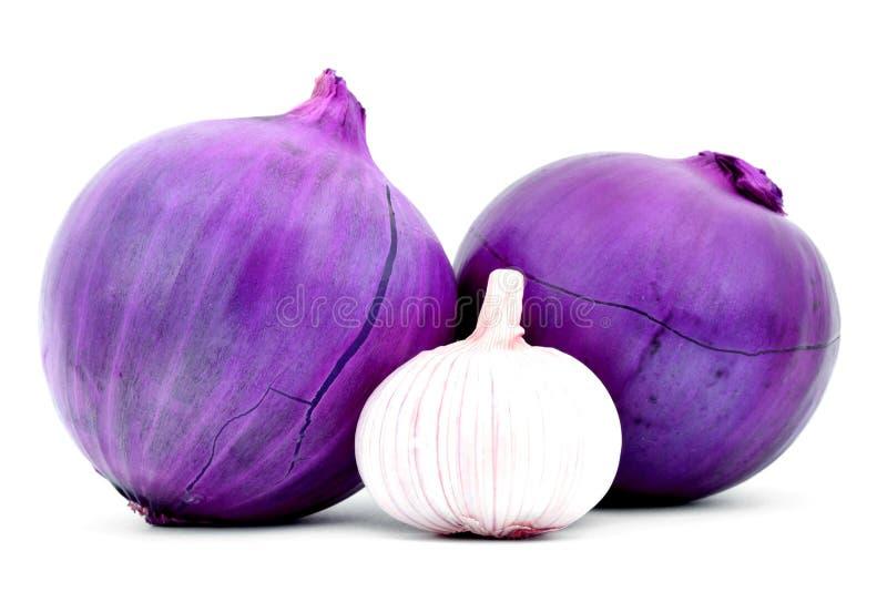 与空白的两颗紫洋葱在被隔绝的皮肤和大蒜 库存图片